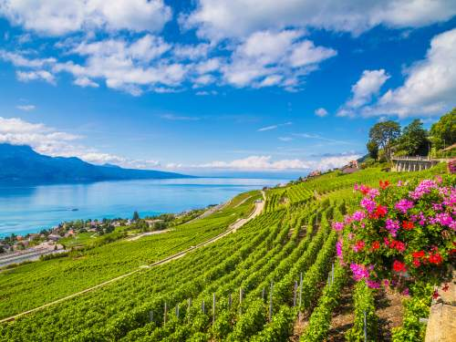 Busreis Alpenreis Zwitserland & Oostenrijk